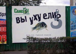 reklama31